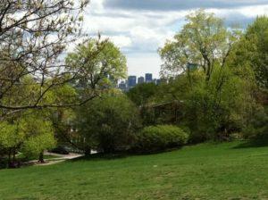 Correy-Hill Park Boston